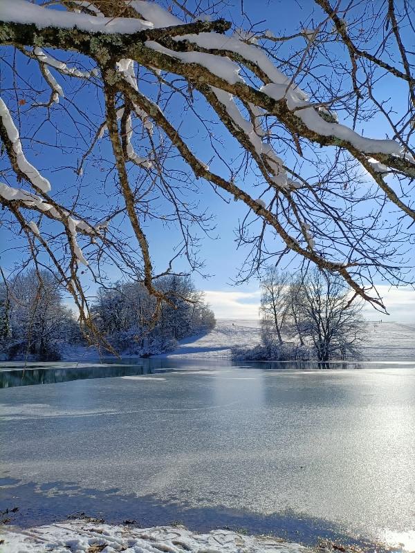 Eichener See erstrahlt in winterlichem Glanz